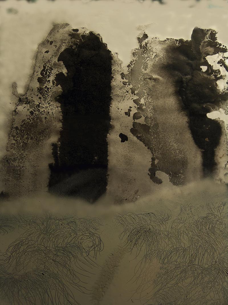 François Lannes - Peinture Photo - Carbonolites poudreuses