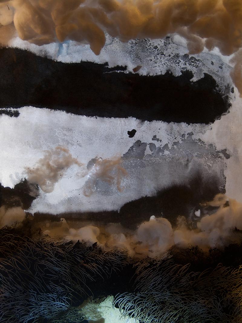 François Lannes - Peinture Photo - Sustantation