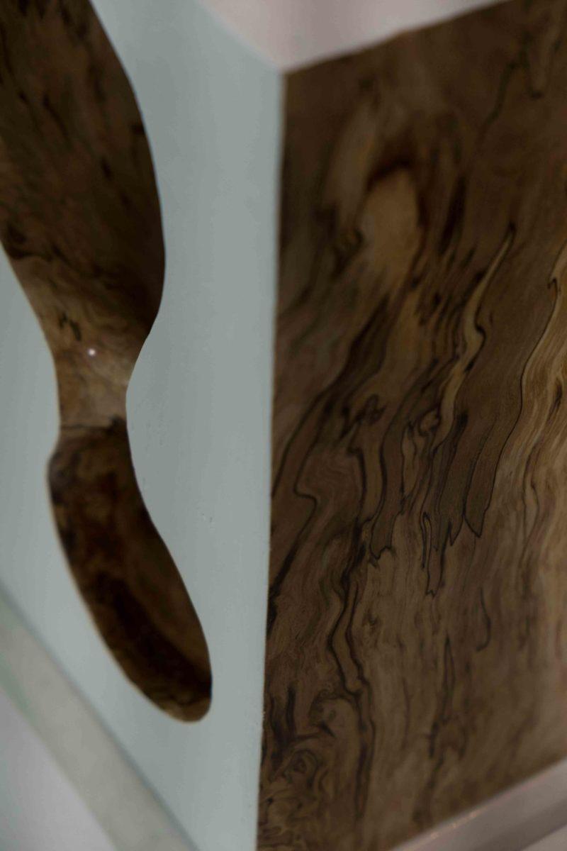 Signolet - Carré - détail - Hêtre du Père Lachaise - 2018 - 40 x 20 cm