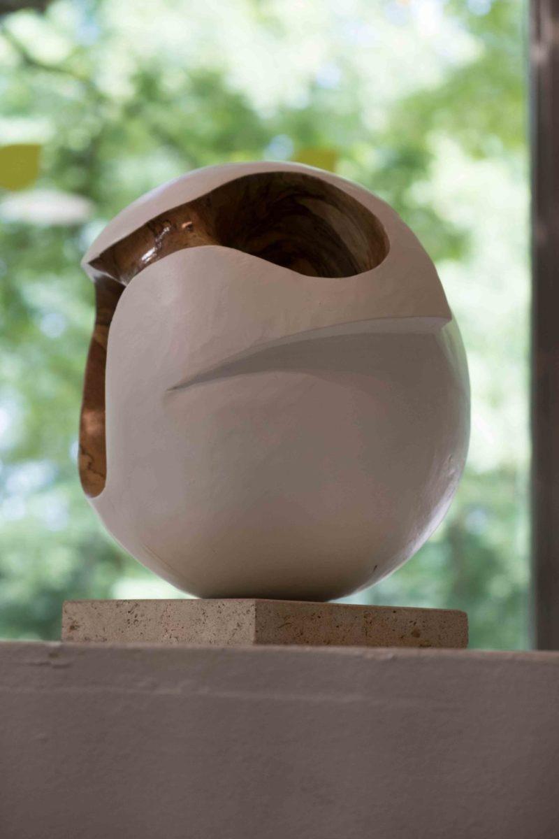 Signolet - Cercle - Hêtre du Père Lachaise - 2018 - 40 cm